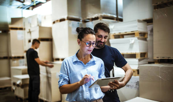 How can a warehousing solution aid in business growth